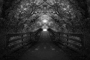 Black And Whites - Crossing Over - Black and White by Anthony Rego