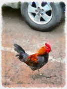 Chicken Mixed Media Posters - Crossing the Road Poster by Anthony Caruso