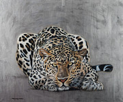 Beautiful Animal Framed Prints - Crouching Leopard Framed Print by Susana Falconi