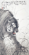 Chinese Tiger Prints - Crouching Tiger Print by ChiKeung Lo