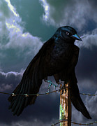 Fantasy Creatures Prints - Crow Print by Georgina Hannay