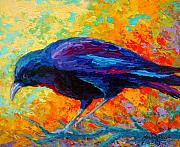 Ravens Metal Prints - Crow III Metal Print by Marion Rose