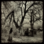 Eerie Digital Art Prints - Crow Waits On Tombstone Print by Gothicolors And Crows