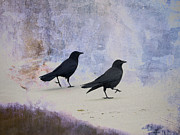 Crow Collage Prints - Crows Walking on the Beach Print by Carol Leigh