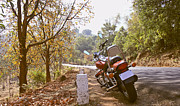 Two Wheeler Photo Prints - Cruiser in Autumn Print by Kantilal Patel