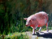 Piglet Paintings - Cruisin by Cari Humphry