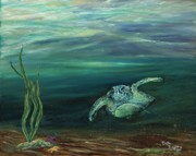Debra Bailey - Cruising turtle