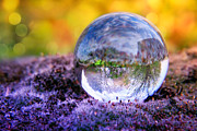 Crystal Art - CRYSTAL BALL - In the moss II by Viaina