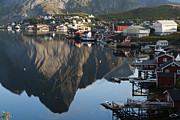 Lofoten Islands Photos - Crystal Waters at Reine Village by Heiko Koehrer-Wagner