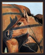 Animals Drawings - Crystals Shadow by Lori Lamberson