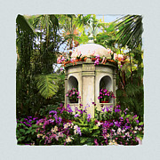 Orchid Show Framed Prints - Cuban Orchid Show Framed Print by David Klaboe