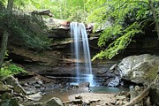 Adam Photos - Cucumber Falls Pool by Adam Jewell