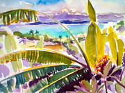 Puerto Rico Painting Metal Prints - Culebra and Bananas Metal Print by Barbara Richert