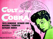 1950s Poster Art Framed Prints - Cult Of The Cobra, Faith Domergue Framed Print by Everett