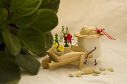 Miniature Photos - Cultivating Confection by Heather Applegate