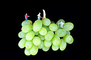 Funny Digital Art Framed Prints - Cultivation on grapes Framed Print by Mingqi Ge