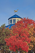 Weathervane Photo Prints - Cupola Coolidge Park Carousel Print by Tom and Pat Cory