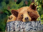 Brown Bear Paintings - Curiosity by Patricia Pushaw