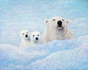 Polar Bears Paintings - Curiosity by Sandy Moser