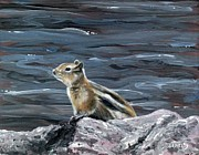 Scott Melby Metal Prints - Curious Chippy Metal Print by Scott Melby