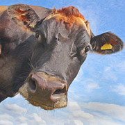Library Digital Art - Curious Cow by Martin  Fry