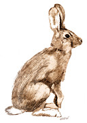 Childrens Art Drawings - Curious Rabbit by Kristen Fox