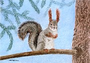 Animal Pastels Pastels Prints - Curious Squirrel Print by Maria Malevannaya
