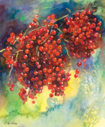 Berry Drawings - Currants berries painting by Svetlana Novikova