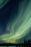 Northern Lights Prints - Curtain Whispers Print by Ed Boudreau
