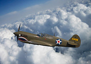 Tigers Posters - Curtiss P-40 Warhawk Poster by Adam Romanowicz