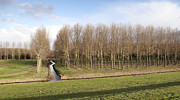 Flevoland Art - Curved Ditch in The Netherlands by Anton Havelaar