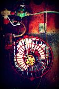 Rusty Mixed Media Framed Prints - Curved Fan Framed Print by Dana  Oliver