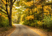 Fall Road Posters - Curves Ahead Poster by Scott Norris
