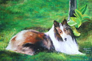 Dog Portraits Pastels Prints - Custom Portrait Print by Gabriela Valencia