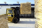 Sawmill Prints - Cut Timber Being Stacked For Drying Print by Ria Novosti