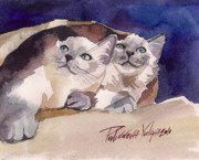 Siamese Kittens Prints - Cute Couple Print by Yuliya Podlinnova
