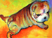 Funny Prints Drawings Prints - Cute English Bulldog puppy dog painting Print by Svetlana Novikova