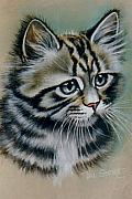 Irresistible Prints - Cute kitten Print by Val Stokes