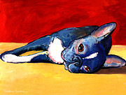 Dog Breeds Paintings - Cute sleepy Boston Terrier dog painting print by Svetlana Novikova
