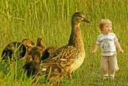 Playing Digital Art Prints - Cute tiny boy playing with ducks Print by Jaroslaw Grudzinski