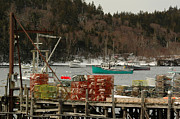Maine Photos - Cutler Harbor by Alana Ranney