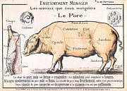 Kitchen Decor Drawings Prints - Cuts of Pork Print by French School