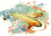 Cutthroat Trout Originals - Cutthroat Trout by Janice Lawrence