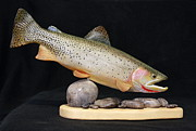 Siuslaw Sculpture Posters - Cutthroat Trout on the Rocks Poster by Eric Knowlton