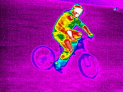 False-colour Framed Prints - Cycling, Thermogram Framed Print by Tony Mcconnell