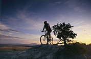 Male Athletes Posters - Cyclist At Sunset, Northern Arizona Poster by David Edwards