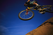 Athletes Posters - Cyclist Jumping, Arizona Poster by David Edwards
