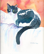 Tuxedo Cat Painting Framed Prints - Cyclone Framed Print by Debbie Cannatella