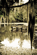 Shawn McElroy - Cypress Swamp Well Head