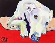 Greyhound Prints - Cyrus Print by Pat Saunders-White